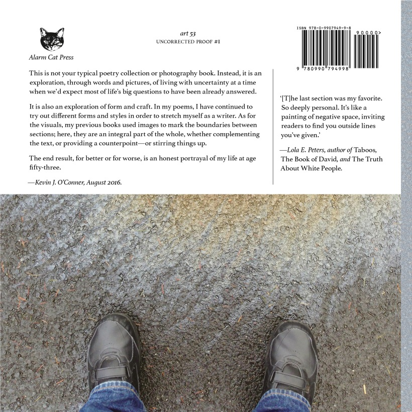 ART53-back-cover